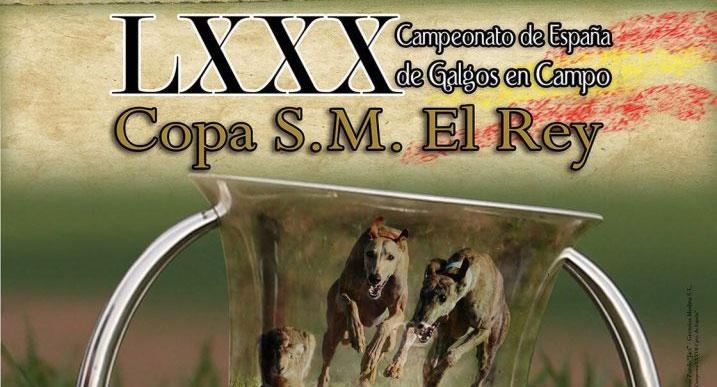 LXXXI Campeonato de España de Galgos en campo