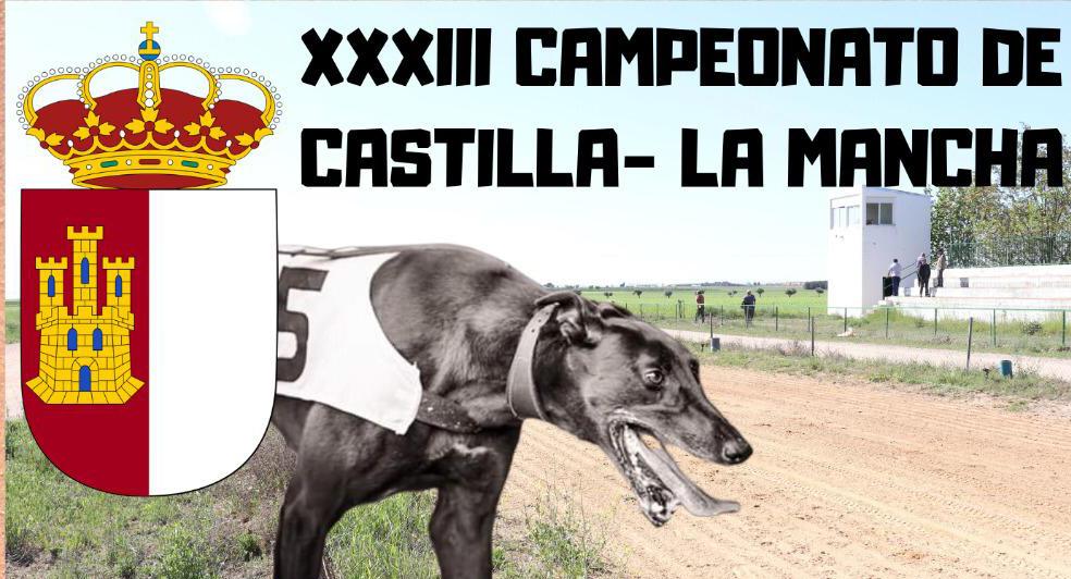 XXXIII Campeonato de Castilla-La Mancha de Galgos en Recta