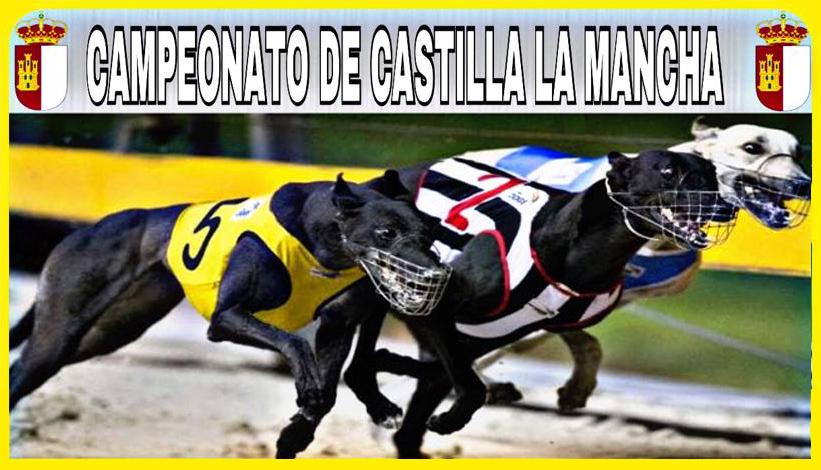 Campeonato de Galgos